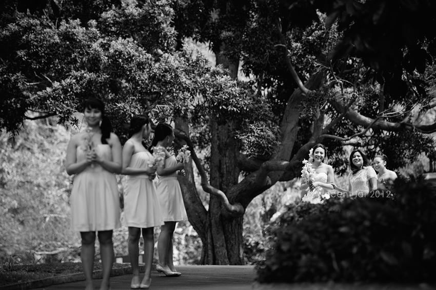 Royal Botanic Gardens Sydney Wedding