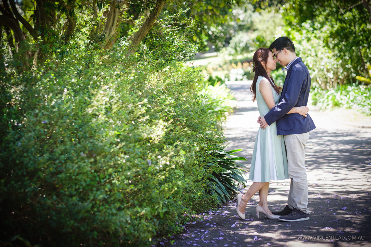 Sydney Royal Botanic Garden Prewedding Photo