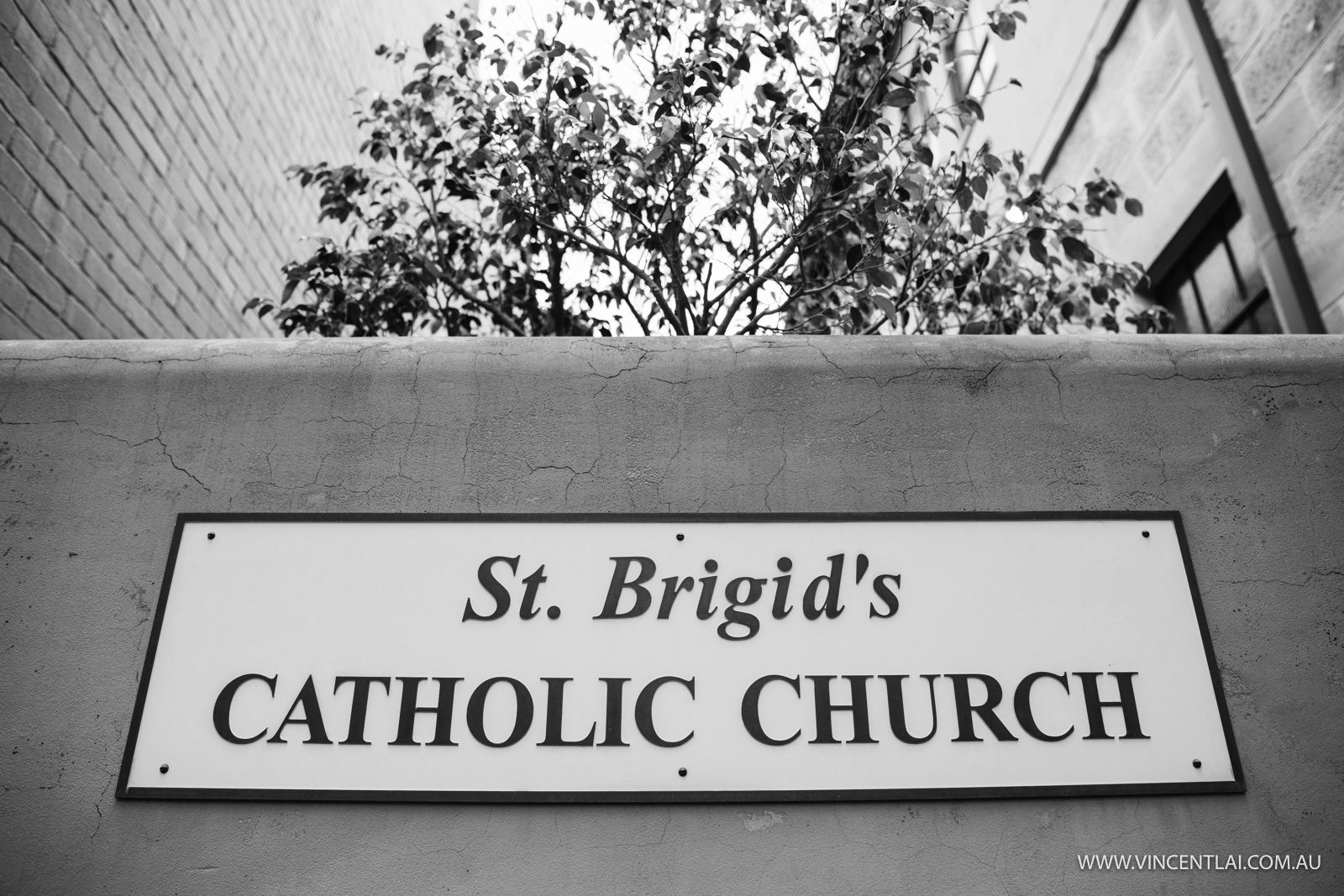 Wedding at St Brigid's Catholic Church Millers Point