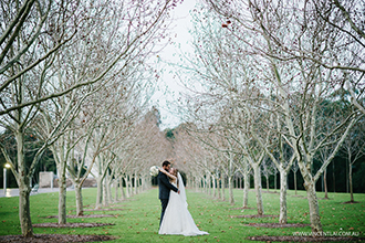 Waterview Bicentennial Park Wedding